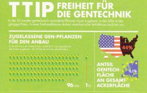 Zugelassener Genmais in USA und Europa